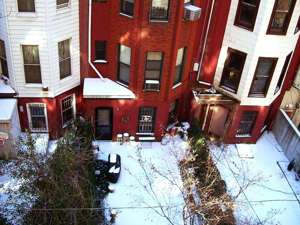 cold back yard by romeogigli