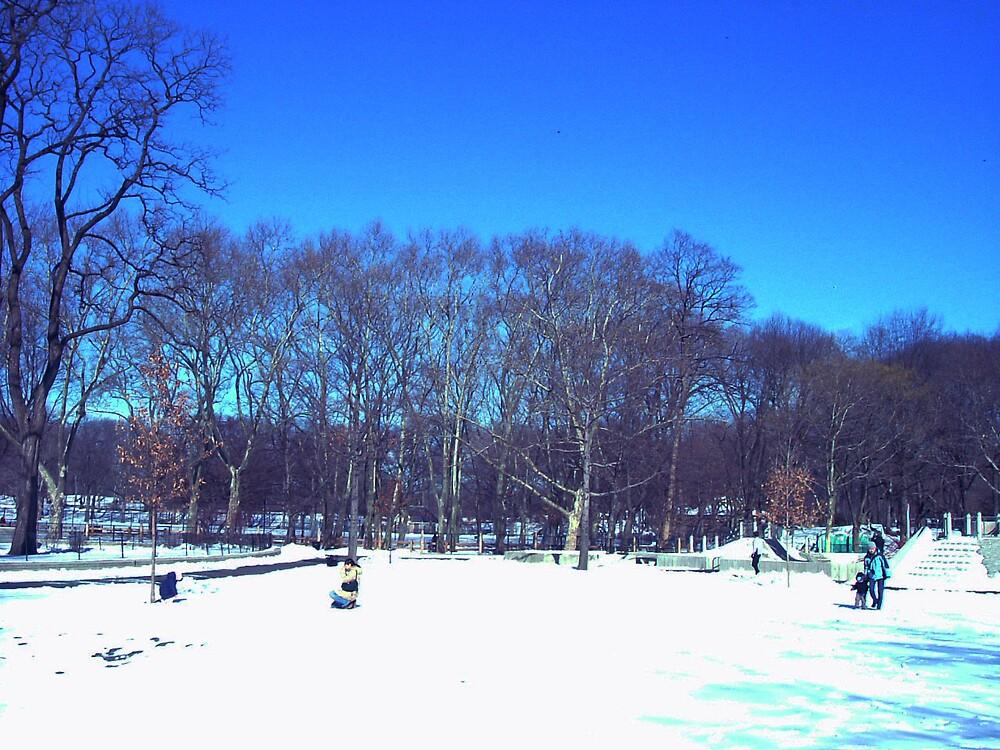 central park by romeogigli