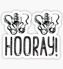 Hip Hip Hooray! Sticker