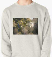 Sunlight manipulation Pullover Sweatshirt