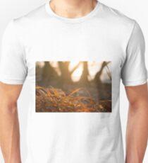 Dried orange red grass closeup beach sunset T-Shirt