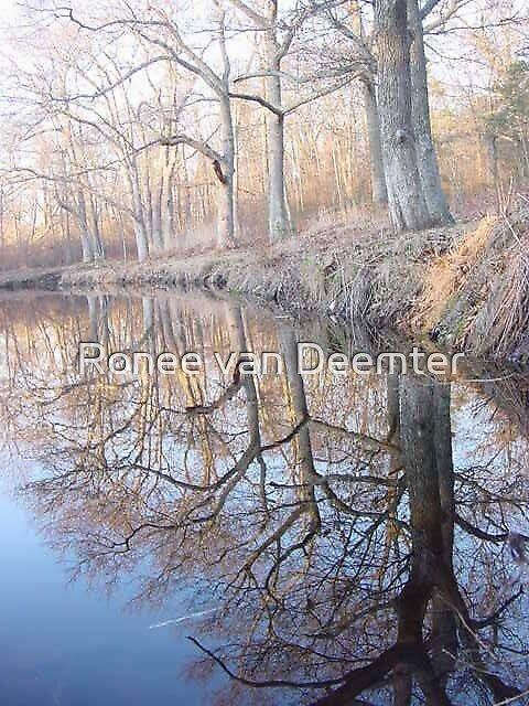 Winter reflections by Ronee van Deemter