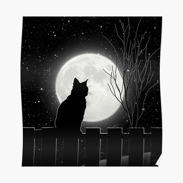Silent night Cat looking at the full moon Poster