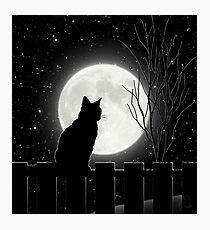 Stille Nacht Katze, die den Vollmond betrachtet Fotodruck