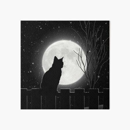 Silent night Cat looking at the full moon Art Board Print