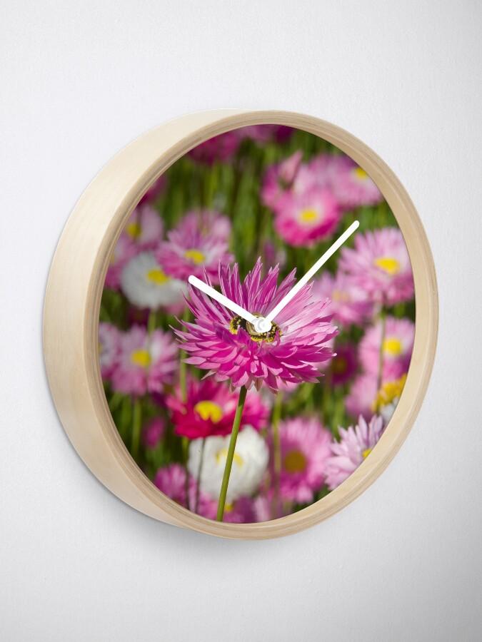Alternate view of everlasting Clock