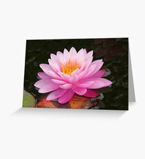 Beauty in the Water Garden Greeting Card