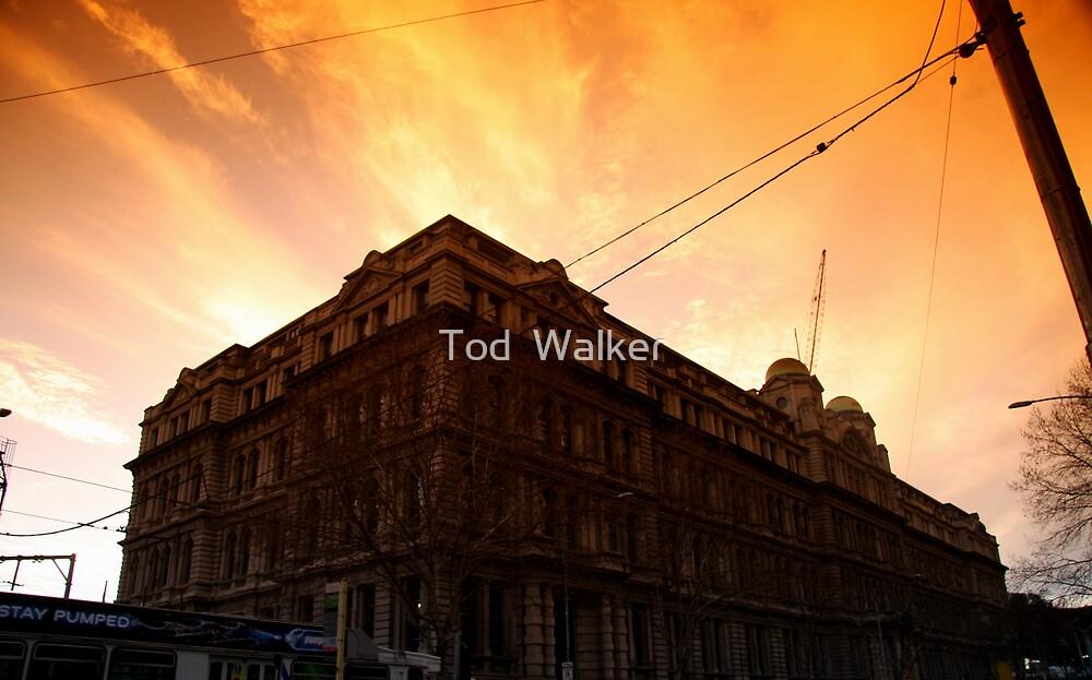 Grand Hotel by Tod  Walker