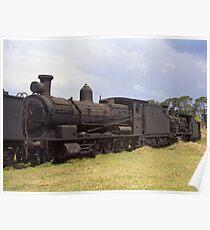 Old Steam Locomotive at Dorrigo, NSW, Australia Poster