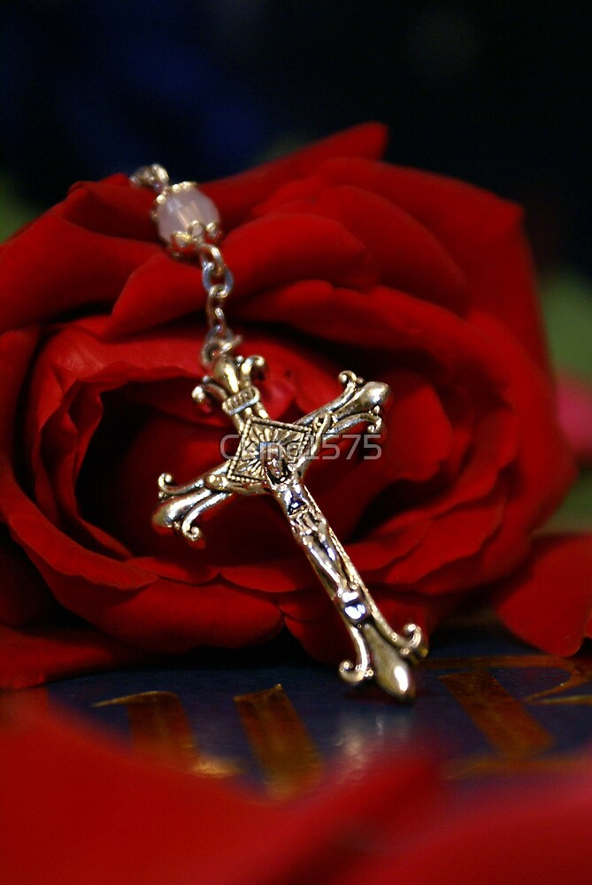 Rosary Rose by Cking1575