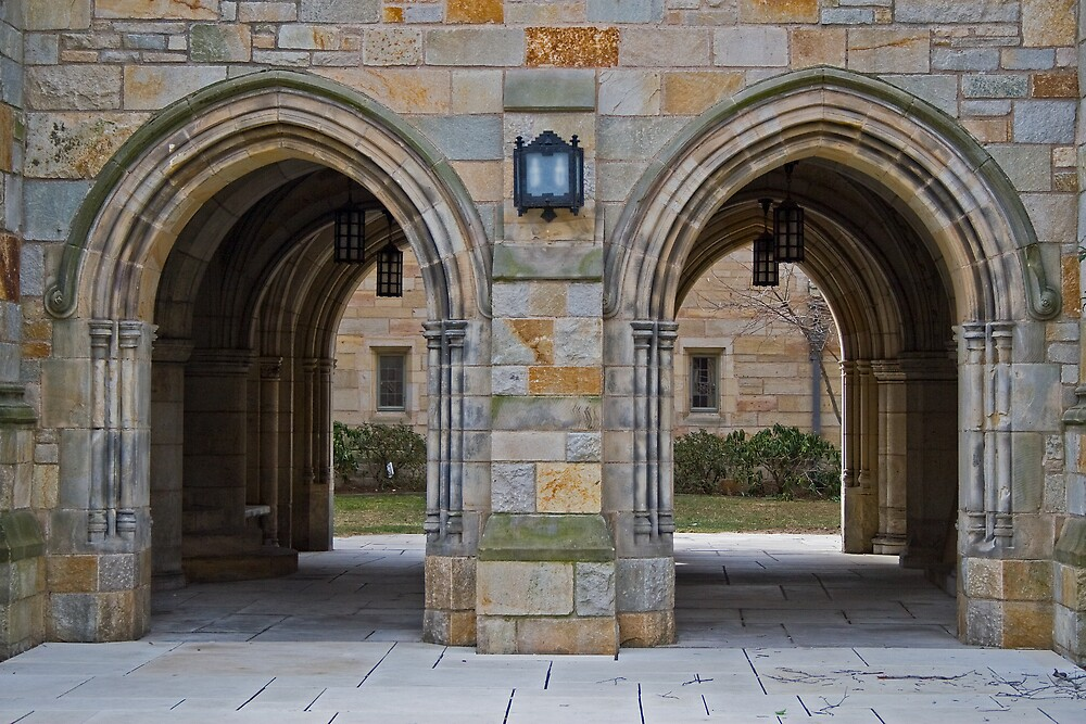 The Yale Project - Photo 9: Twin Arches by PolarityPhoto