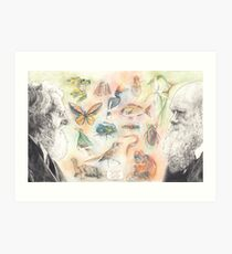 The wildlife of Darwin and Wallace Art Print