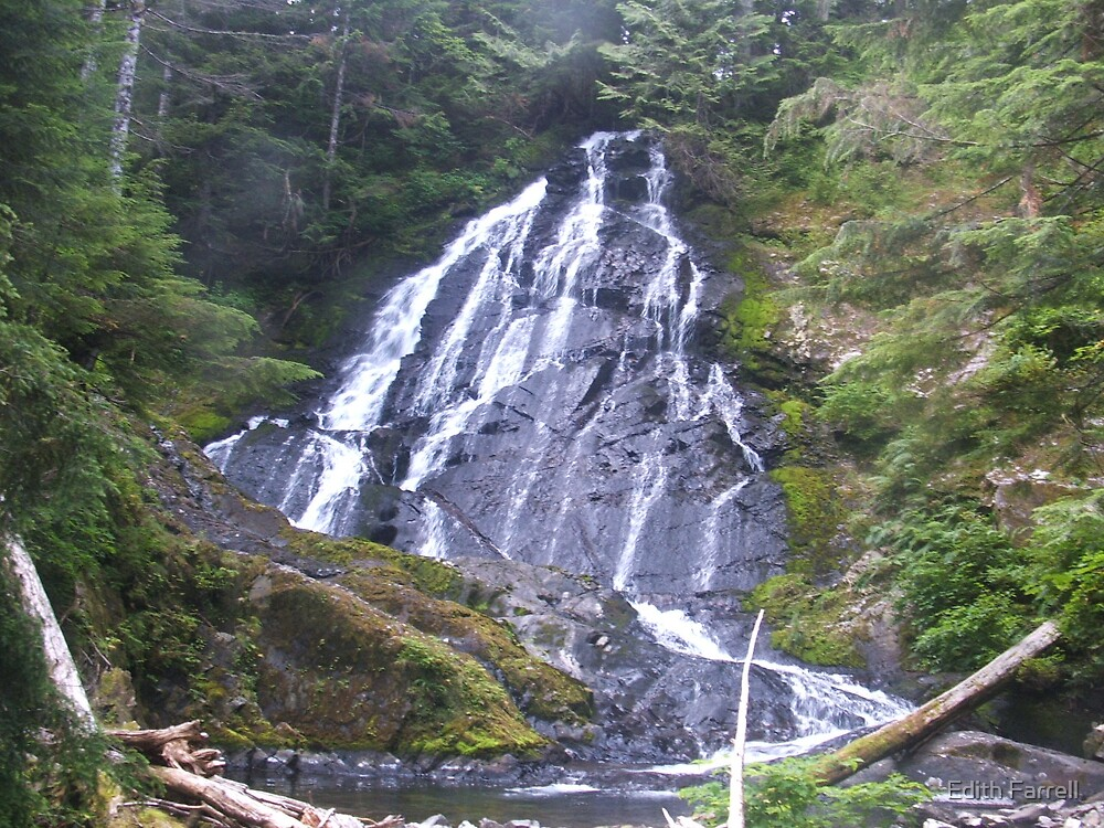 Apron Falls by Edith Farrell