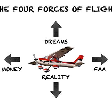 The Four Forces of Flight by shasha9596