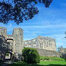 Berry Pomeroy Castle, Devon, England by trish725