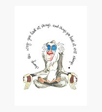 Wise Rafiki Photographic Print