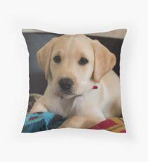 Golden Yellow Labrador Puppy Dog Throw Pillow