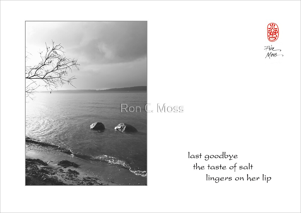 last goodbye by Ron C. Moss