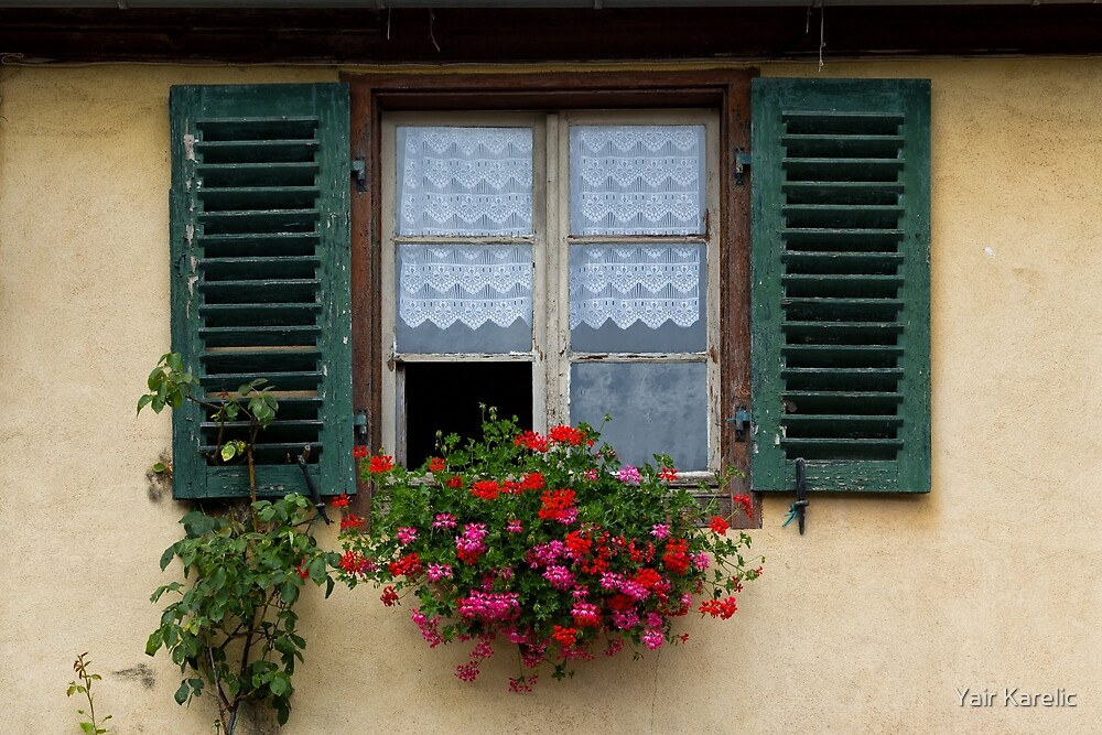 Window and Geraniums by Yair Karelic