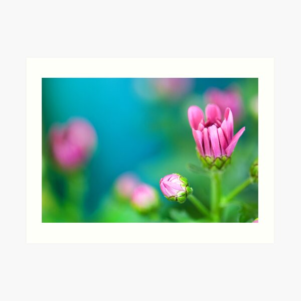 Life is a flower of which love is the honey  Art Print