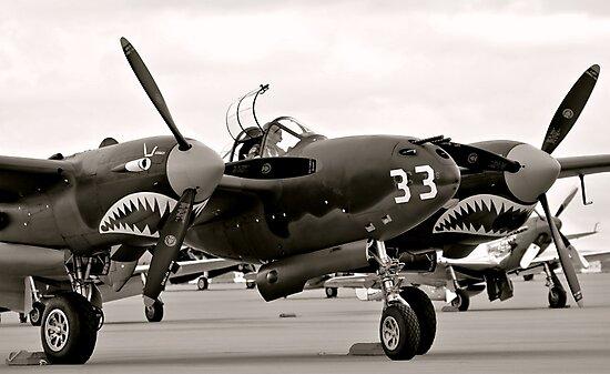 P-52 Lightning WW II Warbird Fighter Plane by Amy McDaniel