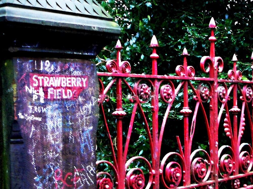Strawberry Field by gail anderson