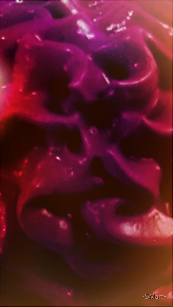 Abstract Rose by -SMart-