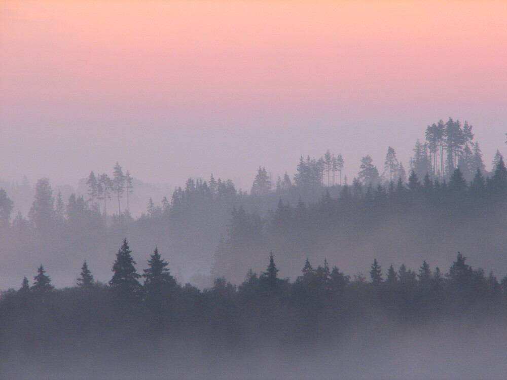 September by Petri Volanen