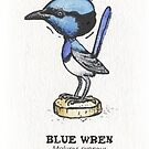 Blue Wren Bobble Head by SnakeArtist