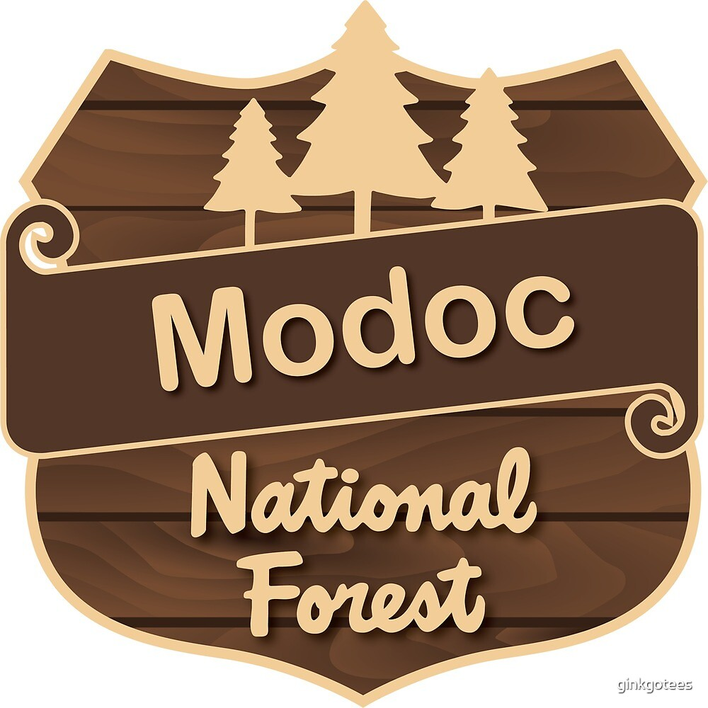 Modoc National Forest by ginkgotees