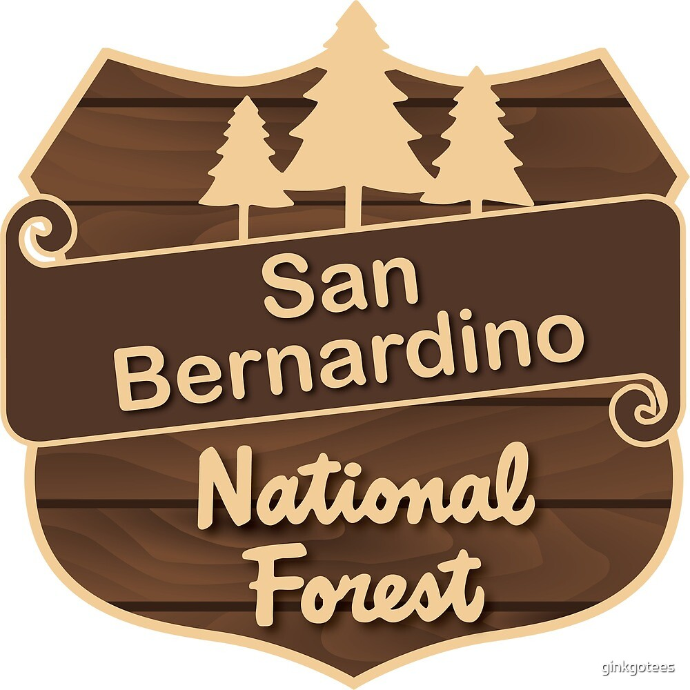 San Bernardino National Forest by ginkgotees