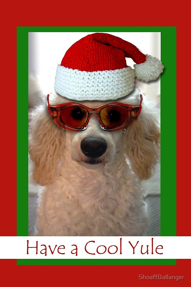 Have a Cool Yule, Poodle with Santa Hat by ShoaffBallanger