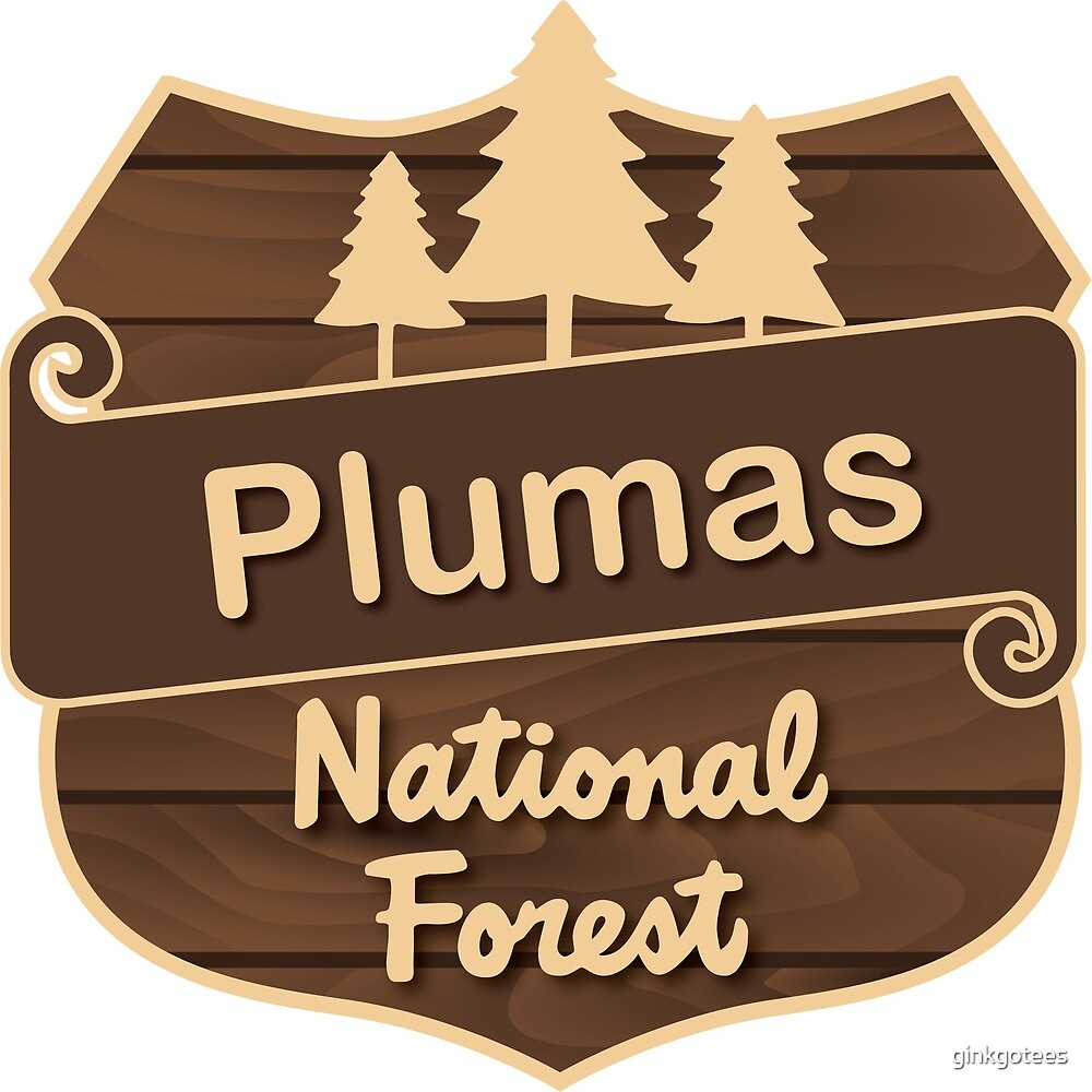 Plumas National Forest by ginkgotees