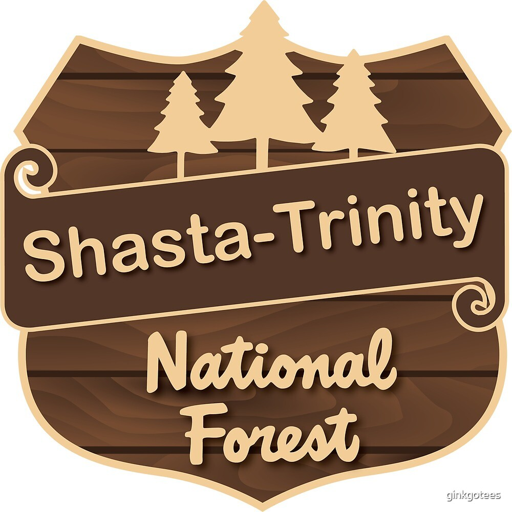 Shasta-Trinity National Forest by ginkgotees