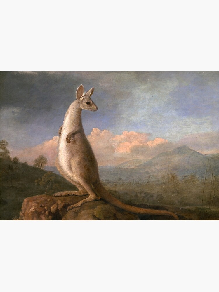 The Kongouro Oil Painting by Australian Artist George Stubbs by podartist