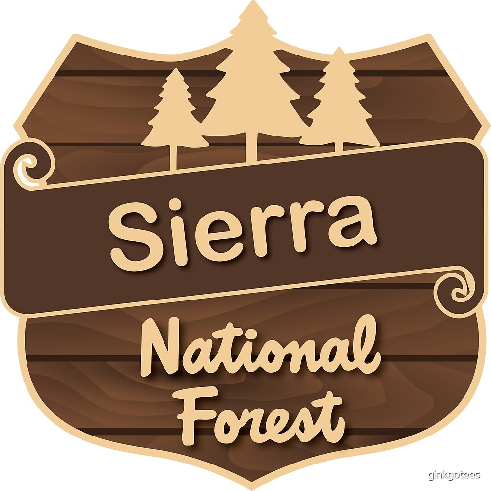 Sierra National Forest by ginkgotees
