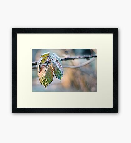 The Breath of Autumn Framed Print