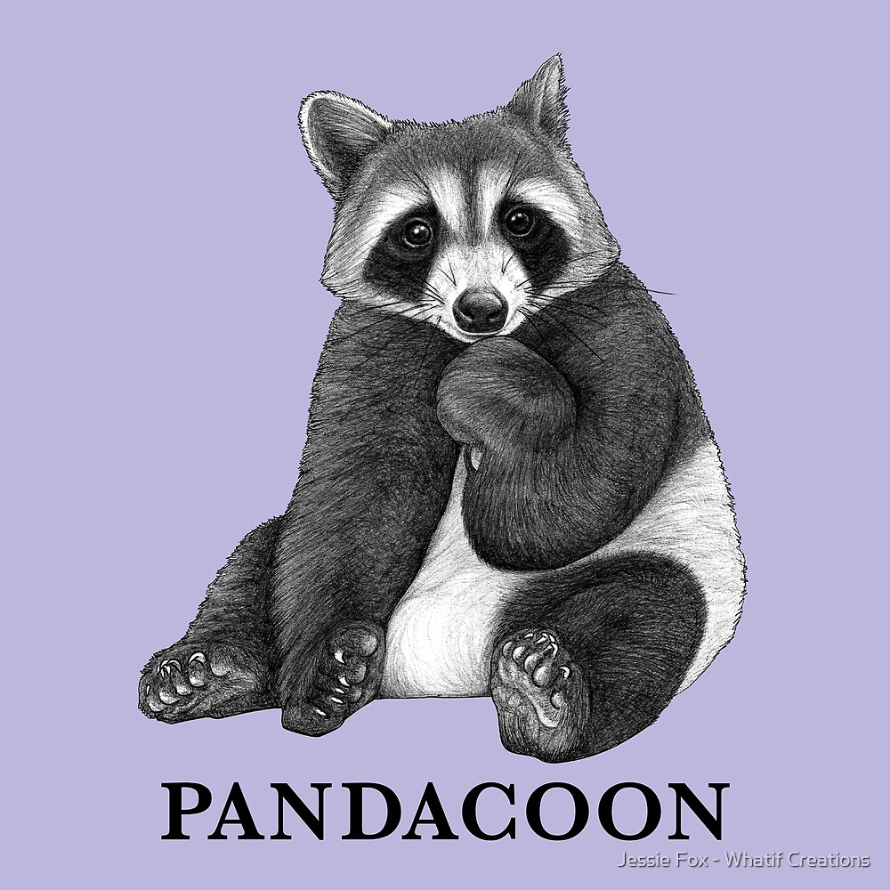 Pandacoon, Panda + Raccoon Hybrid Animal by Jessie Fox - Whatif Creations