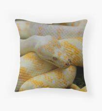 Albino Darwin Carpet Python Throw Pillow
