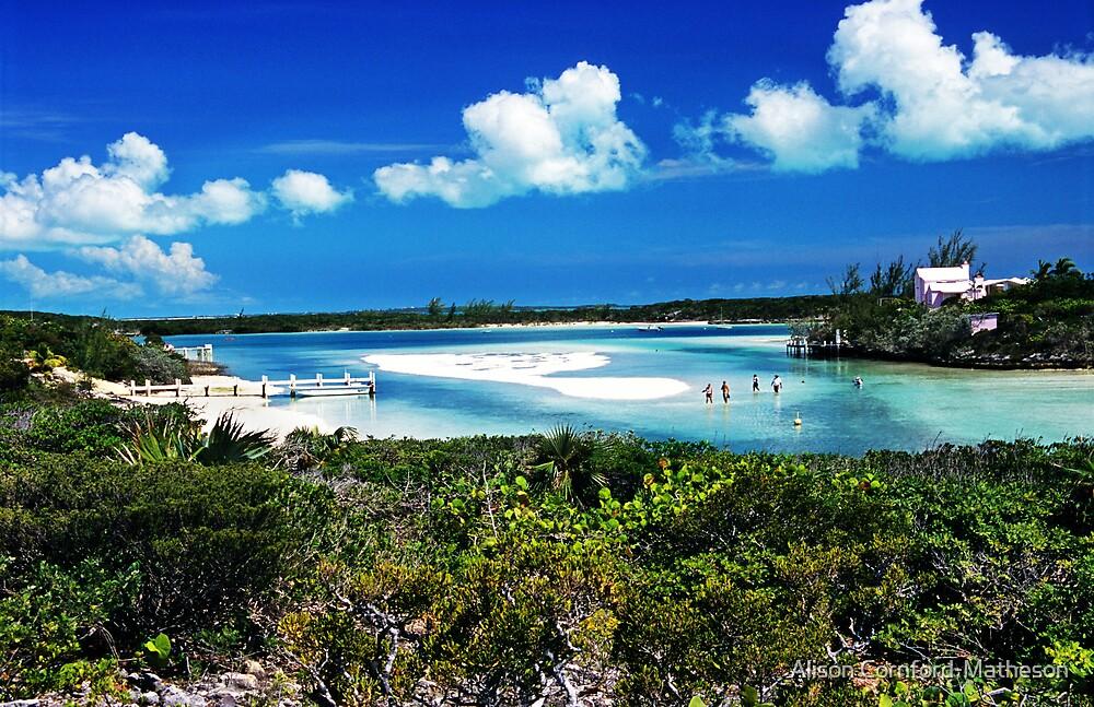 Island Castaways - Stocking Island, Exuma, Bahamas by Alison Cornford-Matheson