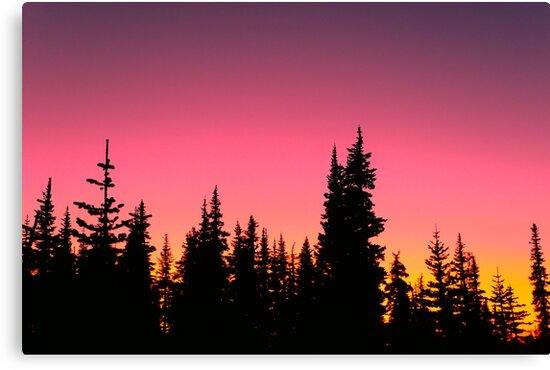Vibrant Tundra Sky by Lilly Allman