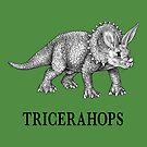 Tricerahops, Triceratops + Rabbit Hybrid Animal by Jessie Fox - Whatif Creations