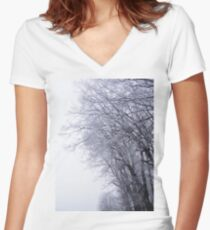Hoarfrost in the mist Women's Fitted V-Neck T-Shirt