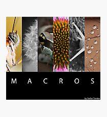 Macros Photographic Print