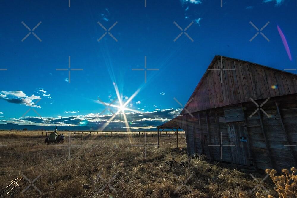 Old Barns of Nevada by Sidetrakn
