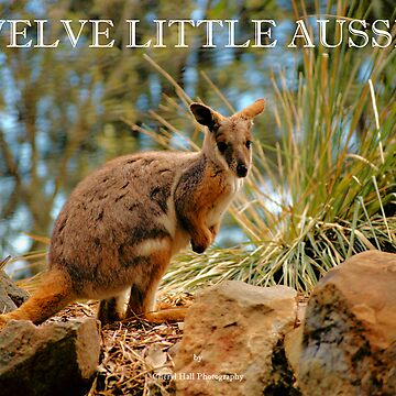 COVER FOR MY TWELVE LITTLE AUSSIES CALENDAR by cmhall