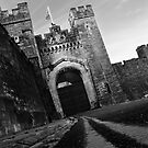 Arundel Castle Gates by Vicki Isted