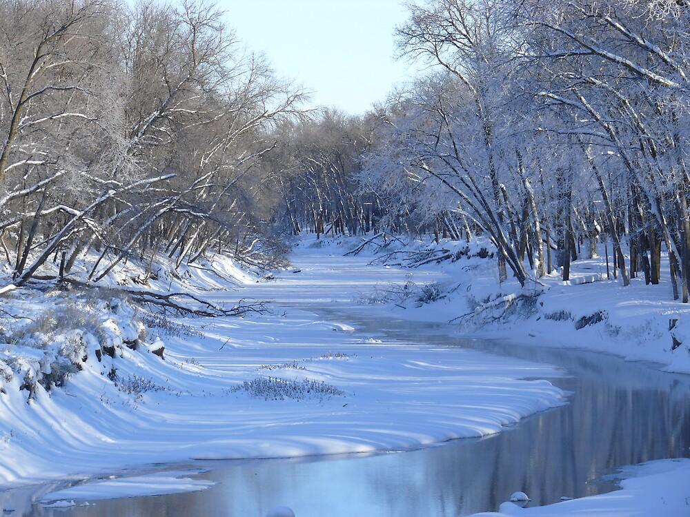 Bend in River by Geoffrey