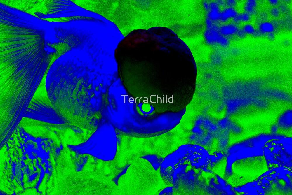 You Smart Little Fishie II by TerraChild