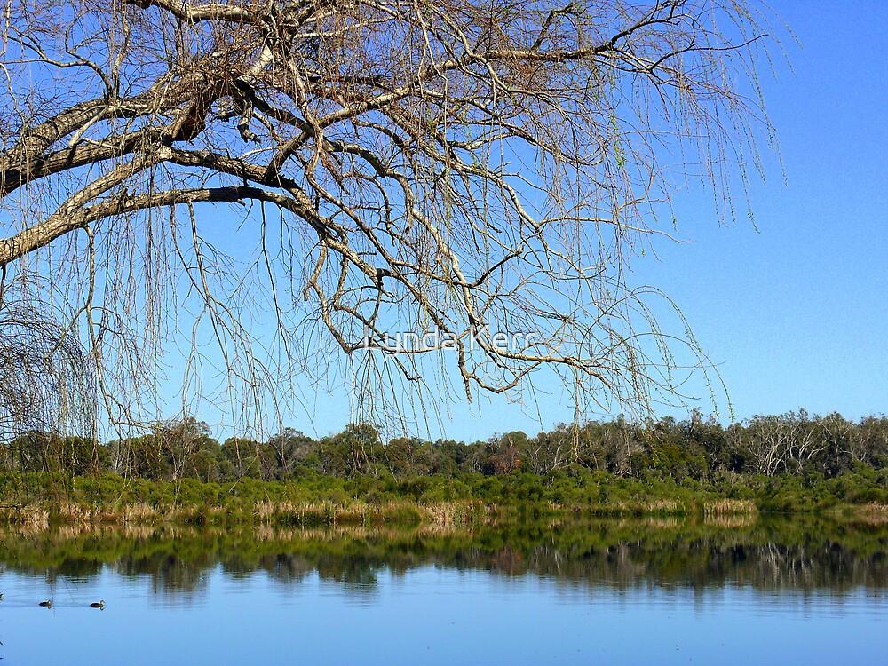 The Lake and Me by Lynda Kerr